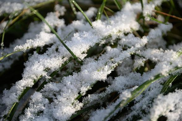 snow-1834565_1920